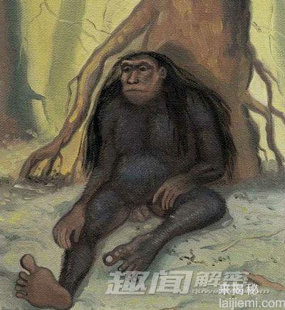 """人类未解之谜:印尼神秘""""小脚怪""""之谜"""