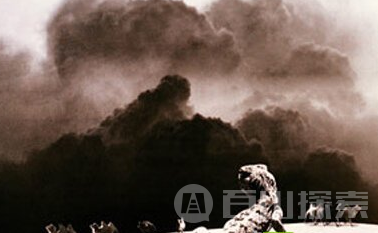 考古队亲身经历:罗布泊惊现恐怖食人蜥蜴!