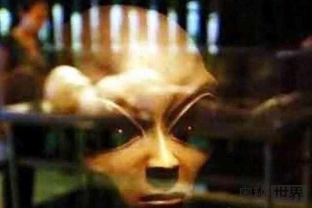 专家称人类还未被外星人发现