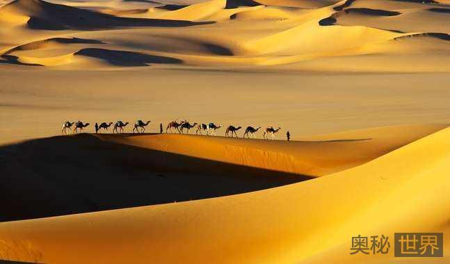 世界上最大的沙漠:撒哈拉沙漠