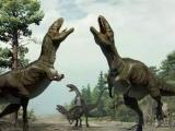 恐龙在十几岁就会产卵生育后代