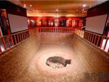 殷墟里为何有白种人骨头?喜欢人祭的商朝是谁建的?