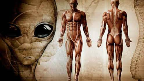 人类的始祖来自外星球吗
